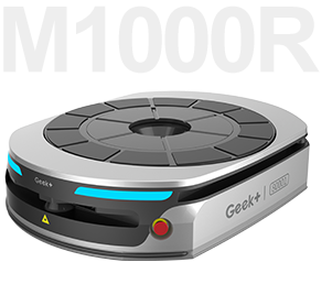 301x268-M1000R-1